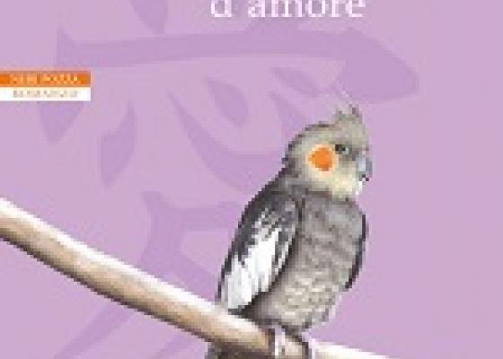 Ribon messaggero d'amore