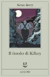 Il fiordo di Killary