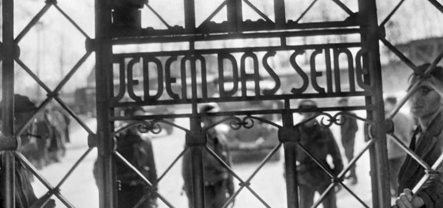 Buchenwald Mangialibri