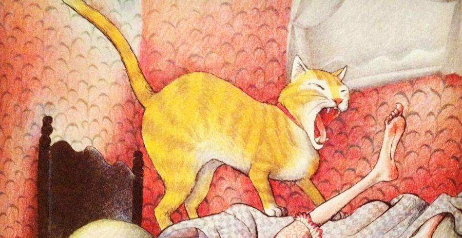 La storia della signora filadritto e del gatto pussavia mangialibri