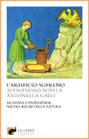 L'artificio supremo
